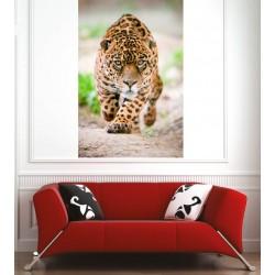 Affiche poster guépard