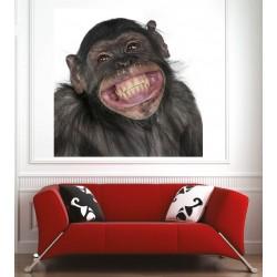 Affiche poster singe sourire