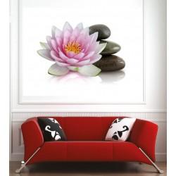 Affiche poster fleur de lotus galets