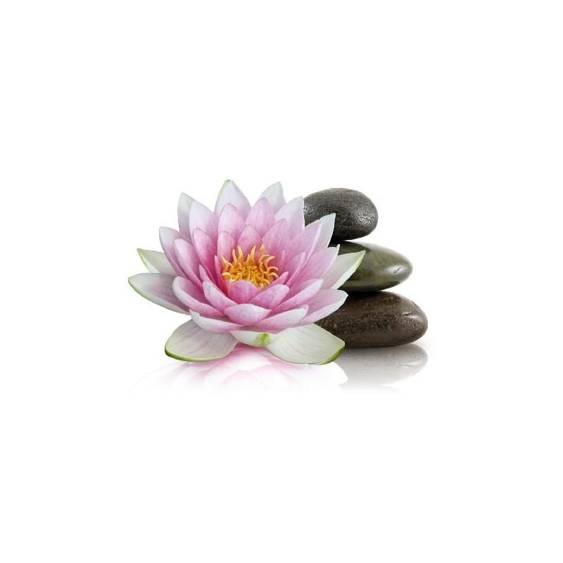 affiche poster fleur de lotus galets art d co stickers. Black Bedroom Furniture Sets. Home Design Ideas