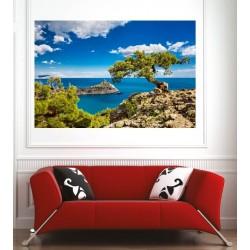 Affiche poster arbre vue sur la mer