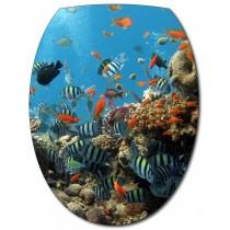 Sticker Abattant de WC Aquarium