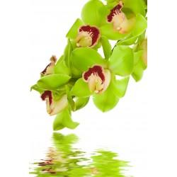 Sticker pour frigidaire fleurs
