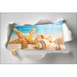 Sticker Trompe l'oeil étoile de mer coquillage