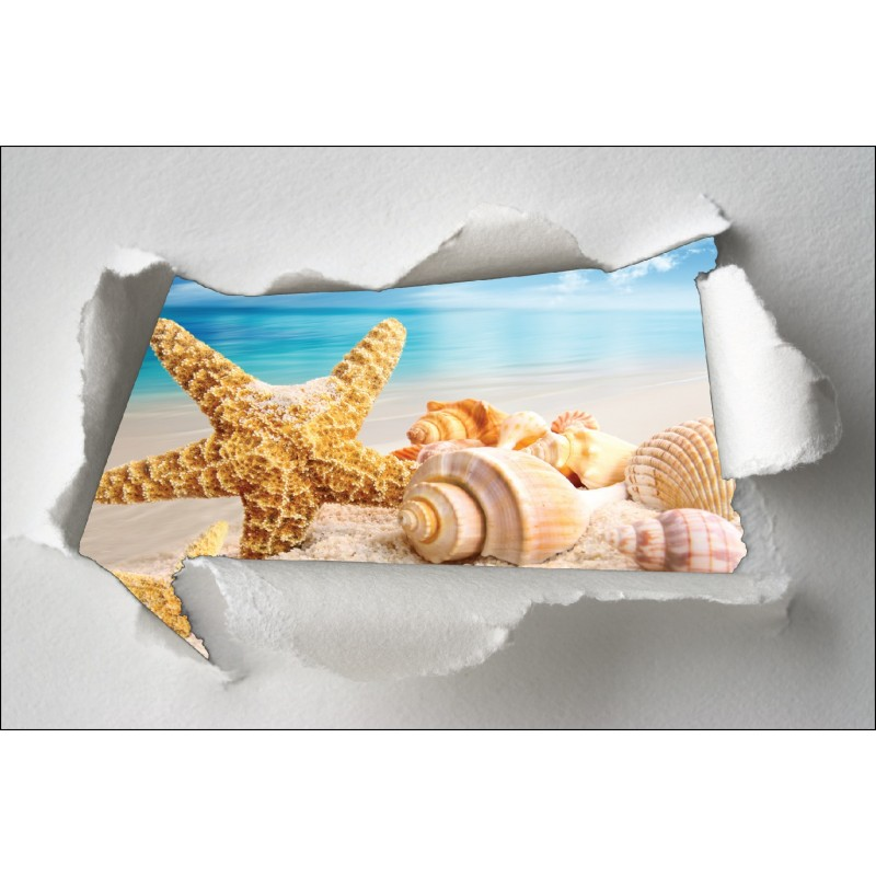 Sticker trompe l 39 oeil toile de mer coquillage art d co for Etoile de mer deco