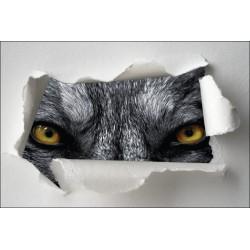 Sticker Trompe l'oeil yeux de loup