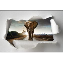 Sticker Trompe l'oeil éléphant sur la route
