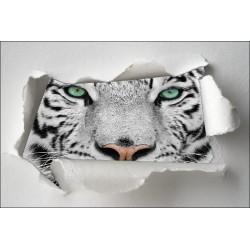 Sticker Trompe l'oeil tigre blanc