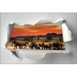 Sticker Trompe l'oeil éléphant savane