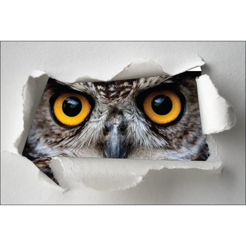 sticker trompe l 39 oeil yeux de hibou art d co stickers. Black Bedroom Furniture Sets. Home Design Ideas