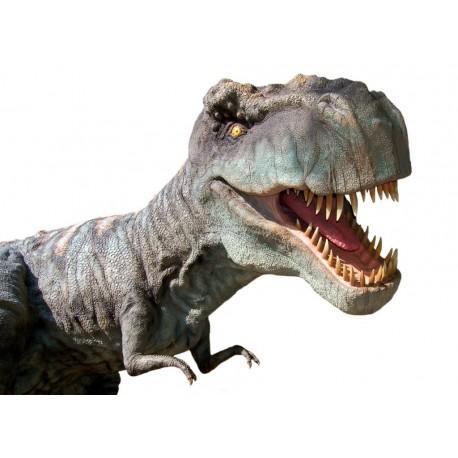 Sticker Dinosaure Tyrex