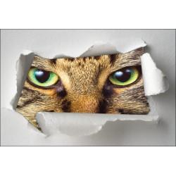 Sticker Trompe l'oeil yeux de chat