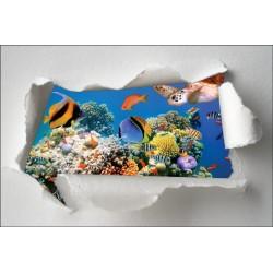 Sticker Trompe l'oeil poissons tropicaux