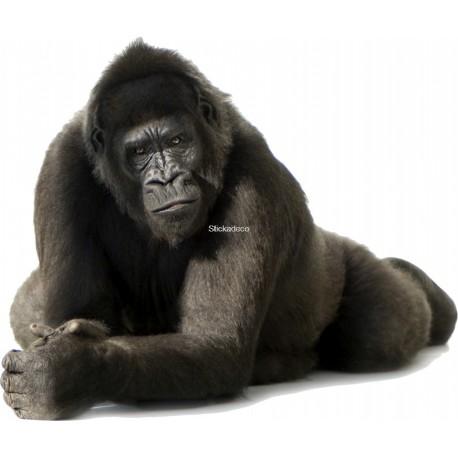 Sticker Gorille