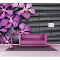 Stickers géant déco : orchidée