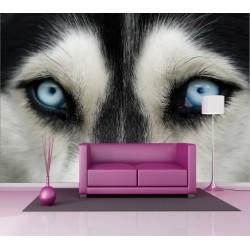 Stickers géant déco : yeux de loup