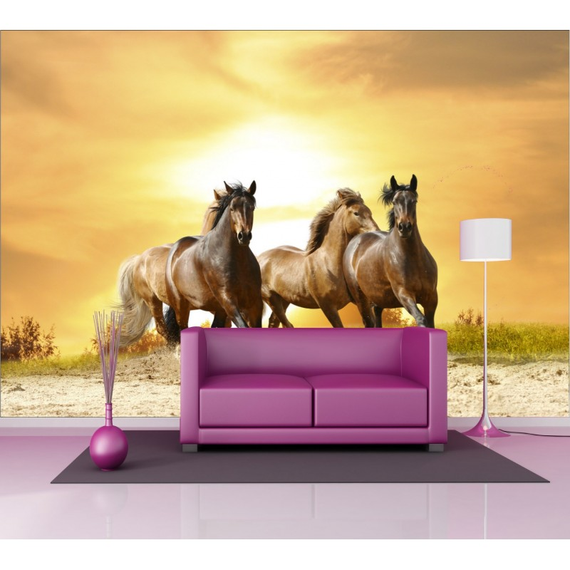 Stickers g ant d co chevaux art d co stickers - Poster pour chambre adulte ...