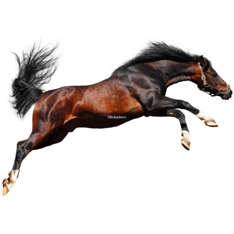 Sticker animaux 3 chevaux 100x67cm
