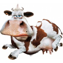 Sticker vache marrante