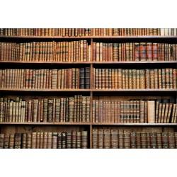 Stickers muraux déco: bibliothèque