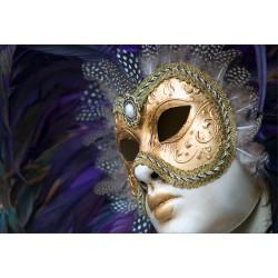 Stickers muraux déco: carnaval Venise